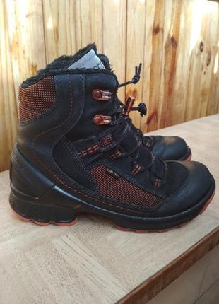 Зимние ботинки ecco gore-tex. размер 34. c846746108a9c