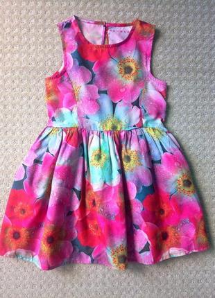 Платье  nutmeg  5-6