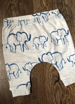 Штаны для малышей, 0-1 месяц, next