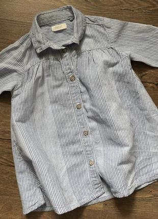 Рубашка платье, next, 6-9 месяцев