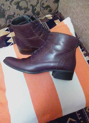 Брендовые,кожаные ботинки,ботильены,полуботинки,полусапоги,39р.от бренда roberto santi.