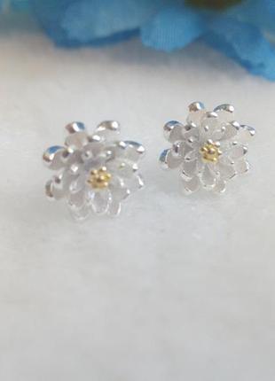 Серьги-гвоздики,серебро 9258
