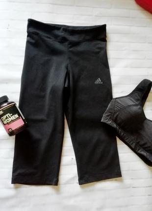 Спортивные бриджи, лосины, леггинсы adidas