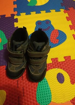 Ботинки сапоги geox