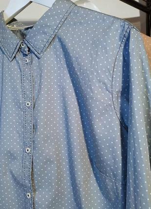 Женская рубашка котон в горох большой размер