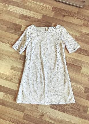 Кружевное базовое нюдовое платье wallis (uk14 - наш 48)