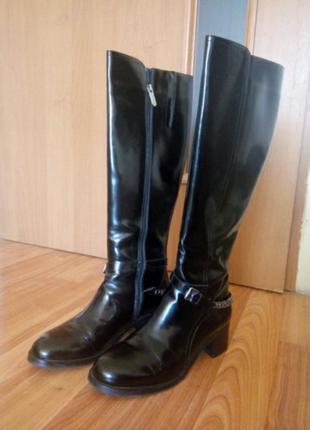 Зимние женские высокие черные сапоги 38 alsace глянцевые кожаные сапожки средний каблук