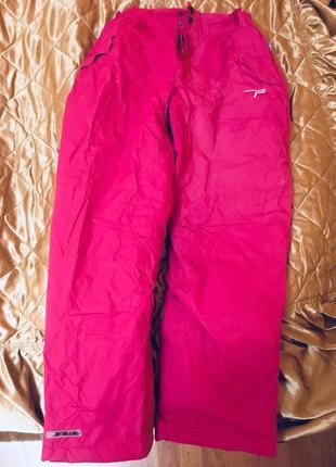 Лыжные штаны parallel