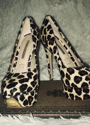 Хит сезона-шикарные туфли в леопардовом принте buffalo london 36 р!