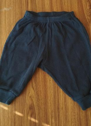 Детские штанишки h&m 218