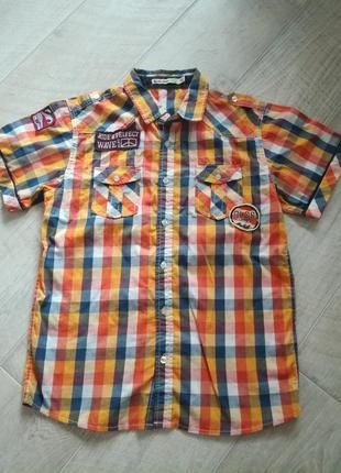 Продам рубашку фирмы glo-story.