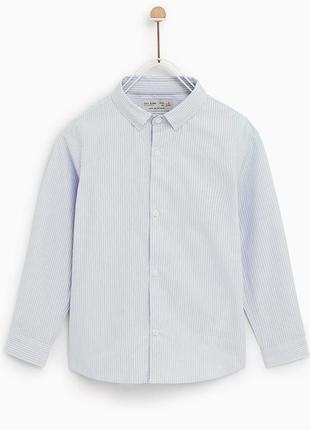 Рубашка в полоску от zara. размер на 8 и 9 лет