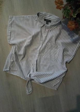 Брендовая рубашка primark