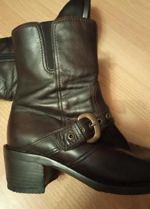 Брендовые,кожаные ботинки,полусапоги,ботильены,38р.от бренда gabor