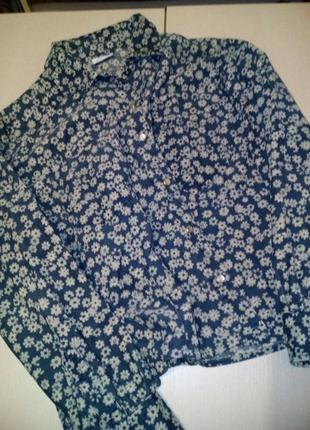 Брендовая укороченная рубашка бойфренд taifun4