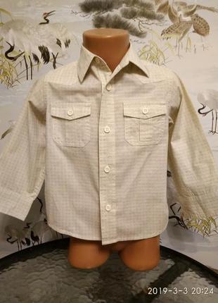Стильная рубашка. 2-3 г