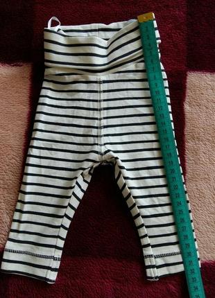 Лосіни (штани), 56 см