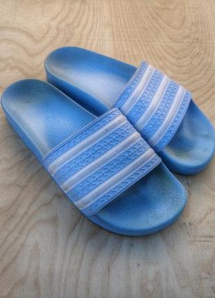 Тапочки сланцы adidas adilette originals slide blue white