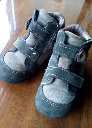 Черевички ботинки деми кожа шкіра замш pepino