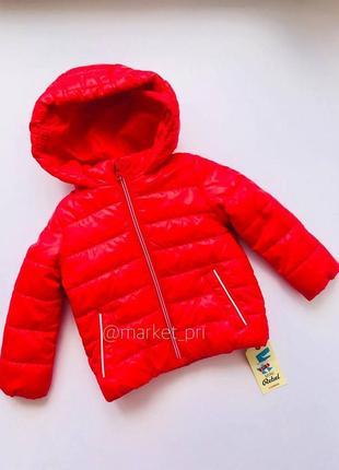 Куртка примарк детская куртка для мальчика primark