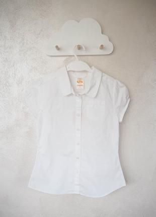 Базова біла сорочка з приємного матеріалу, сша, на зріст 147-152 см