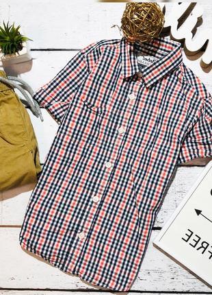 Стильная легкая рубашка rebel 4-5 лет (110)