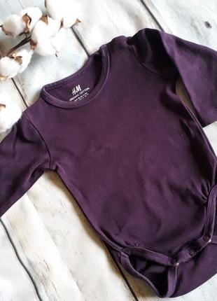 Фиолетовый бодик h&m organic cotton на 3-6 мес