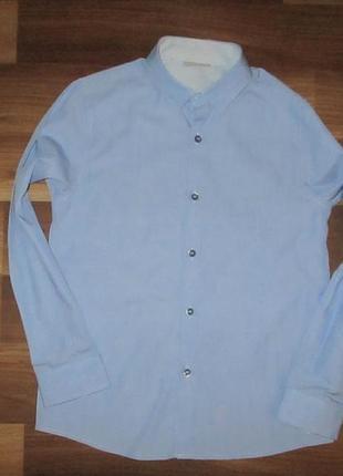 Голубенькая котоновая рубашечка фирмы некст на 8 лет