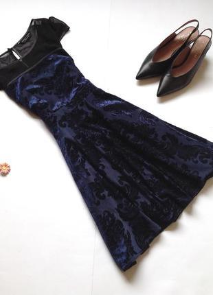 Темно-синее бархатное платье dorothy perkins