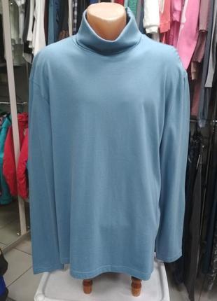 Гольф, мужской, демисезонный, голубой, большой, водолазка, размер 54