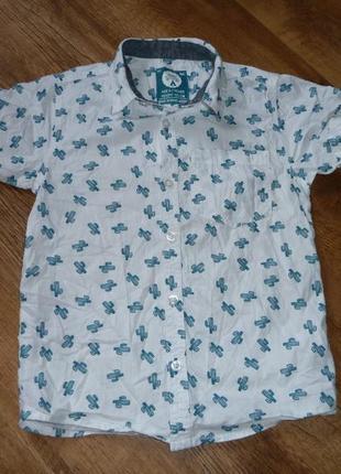 Rebel котоновая рубашка с кактусами на 6-7 лет рост 122 см