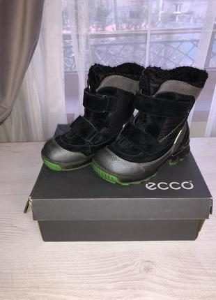 Зимние ботиночки ecco biom р. 26 по стельке 16,5 см.