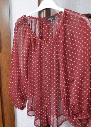 Блузка шифоновая в горошек р. s