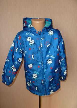 Куртка, ветровка  george на 5-6 лет