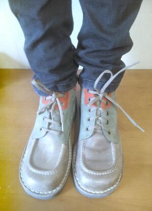 Туфлі черевики