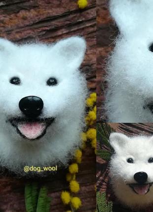 Войлочная брошь самоед собака брошка из шерсти валяная подарок
