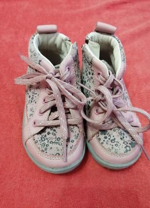 Демісезонні черевички clarks