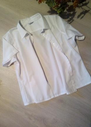Брендовая рубашка bhs1 фото