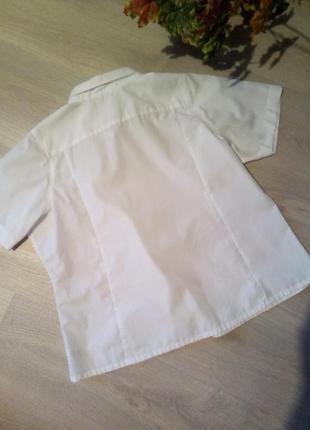 Брендовая рубашка3