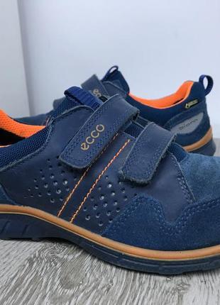 Шикарнейшие кроссовки ecco biom