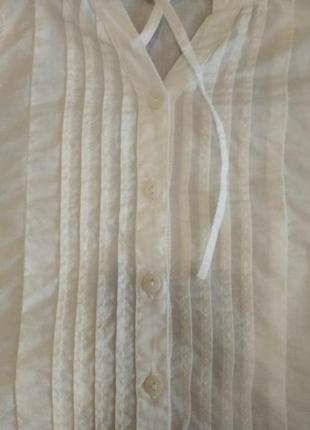 Рубашка calvin klein3