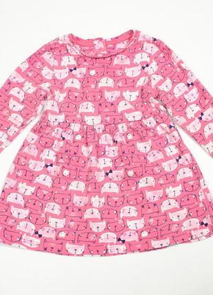 Милое платье с котиками mcare, 9-12 мес.