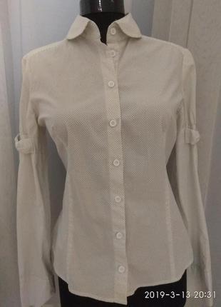 Милая рубашка, блуза в мелкий горошек.