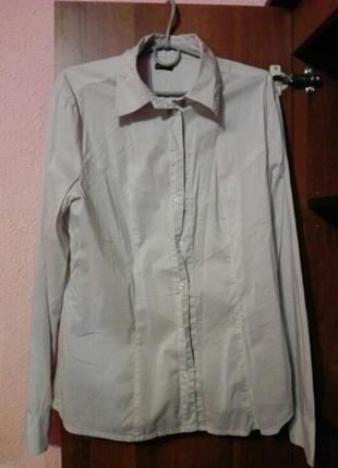 Рубашка бренда motivi