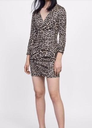 Платье леопардовое animal print zara оригинал оборки оюши