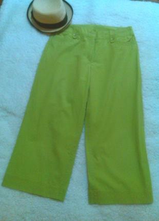 Юбка брюки1