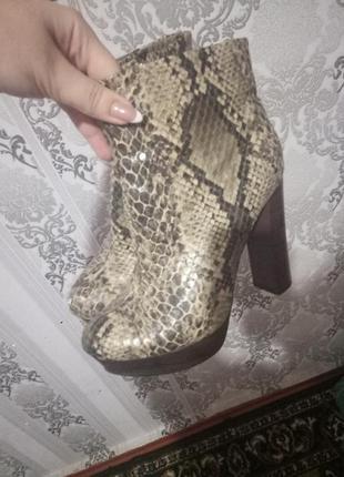 Сапожки ботинки 39