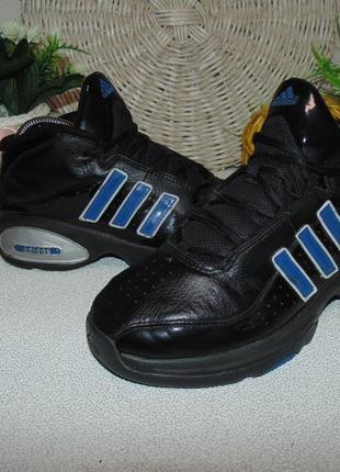 Моднячие кроссовки adidas 38р,ст 24,5см.мега выбор обуви и одежды!