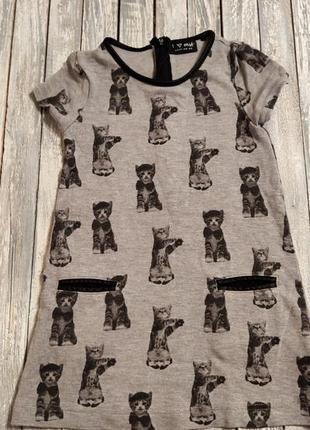 Платье с котиками