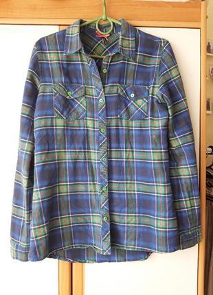 Стильная рубашка в клетку синяя